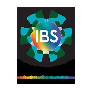 Innovative Business Solutions Logo